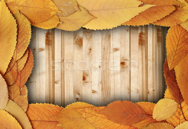 spruce boards table with cherry faded leaves Stock photo © taviphoto
