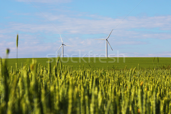 landscape with windmills for green electric power  Stock photo © taviphoto
