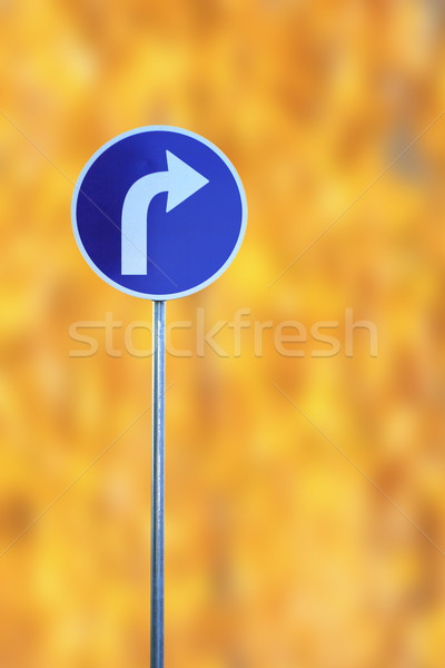 turn right traffic sign Stock photo © taviphoto
