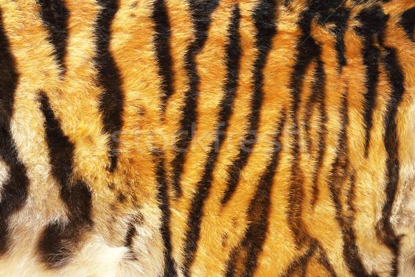 шаблон тигр текстуры реальный кожа волос Сток-фото © taviphoto