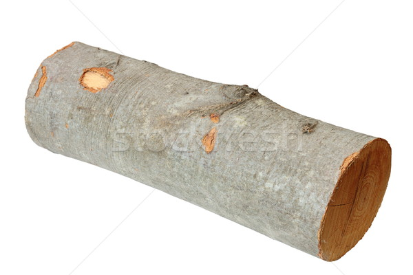 Yakacak odun yalıtılmış gölge parça beyaz ağaç Stok fotoğraf © taviphoto