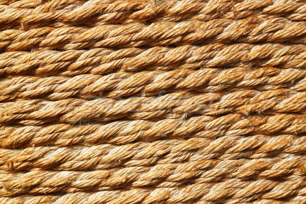 texture of trellis rope Stock photo © taviphoto