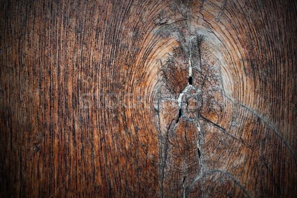 Csomó ősi tölgy palánk textúra terv Stock fotó © taviphoto