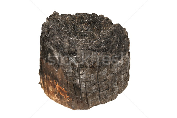 burned wooden stump Stock photo © taviphoto