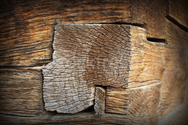 Részleg kilátás befejezés nyaláb tölgy fából készült Stock fotó © taviphoto