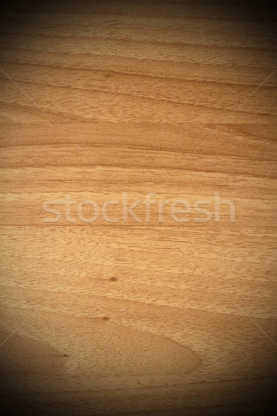 spruce plywood beige texture Stock photo © taviphoto