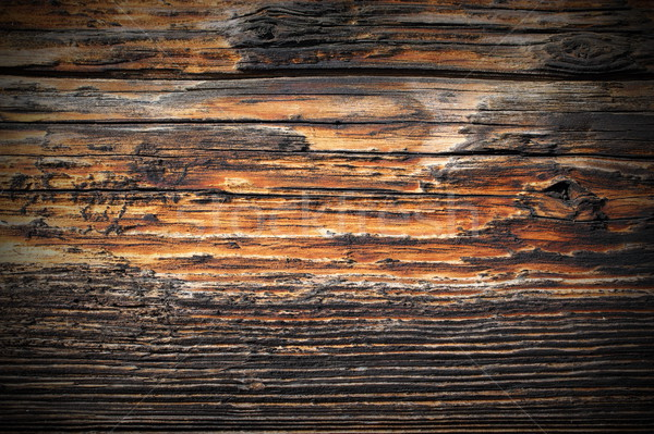 weathered spruce plank real texture Stock photo © taviphoto
