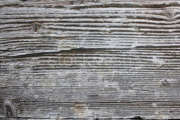Intemperie abete rosso legno effettivo legno Foto d'archivio © taviphoto