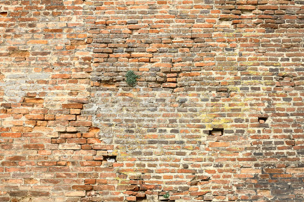 старые внешний кирпичная стена готовый здании Сток-фото © taviphoto
