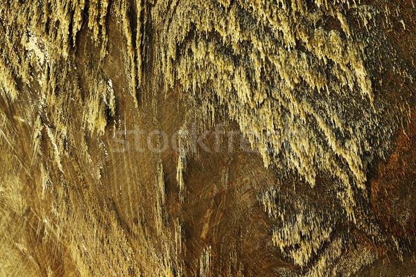 Soli ściany kopalni naturalnych mineralny tekstury Zdjęcia stock © taviphoto