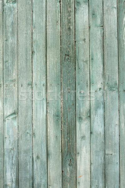 green fir planks texture Stock photo © taviphoto