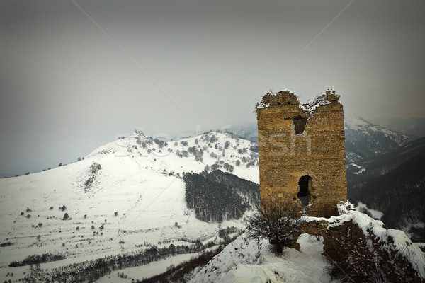 Coltesti fortress in winter scene Stock photo © taviphoto