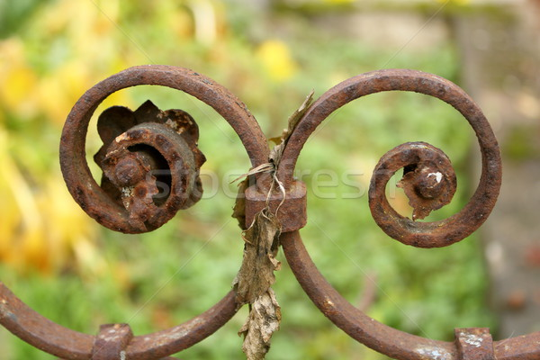 detail of cast iron fence Stock photo © taviphoto