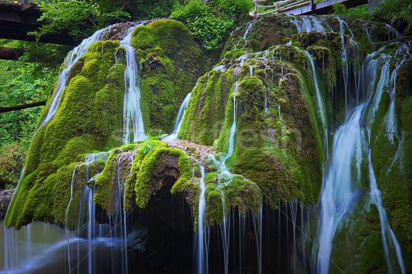 Részlet gyönyörű vízesés vízesés fa tavasz Stock fotó © taviphoto