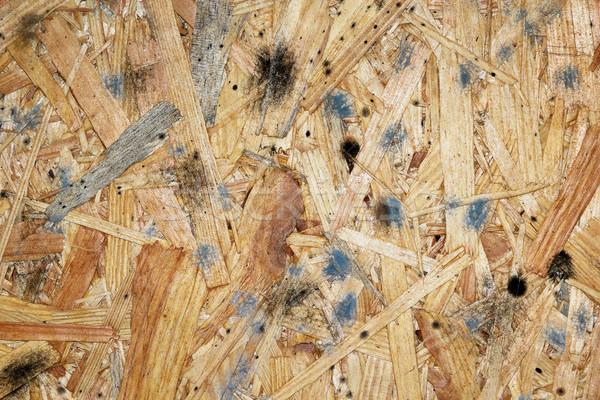 mildew on wooden plank Stock photo © taviphoto