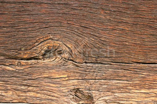 美しい 古い オーク 本当の ストックフォト © taviphoto