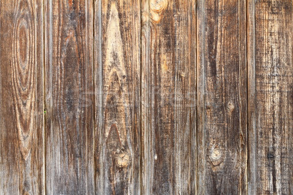 spruce boards fence texture Stock photo © taviphoto