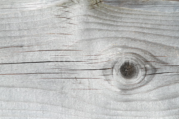 weathered spruce plank Stock photo © taviphoto