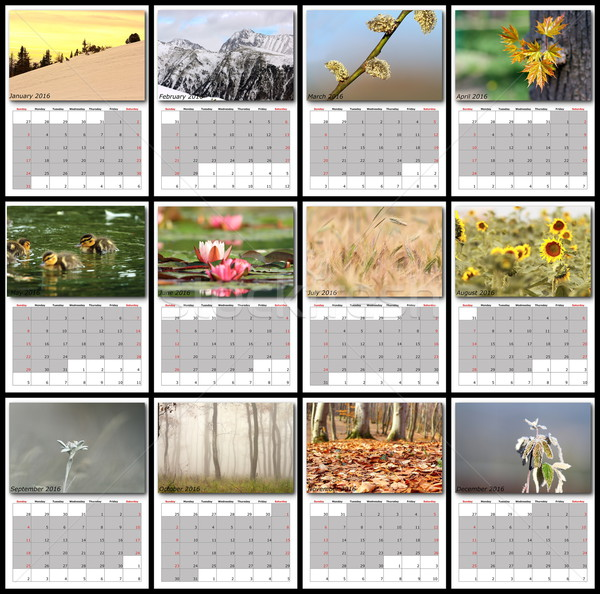 nature images calendar year 2016 Stock photo © taviphoto