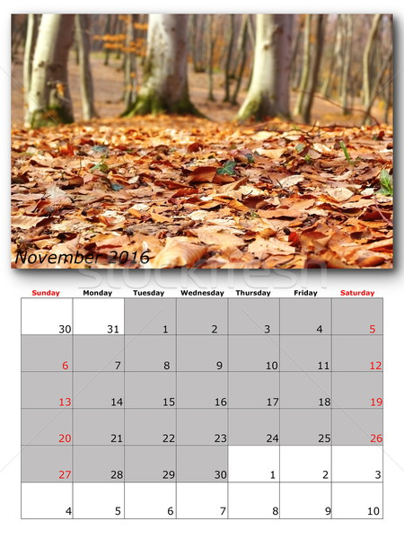 november nature calendar page layout Stock photo © taviphoto