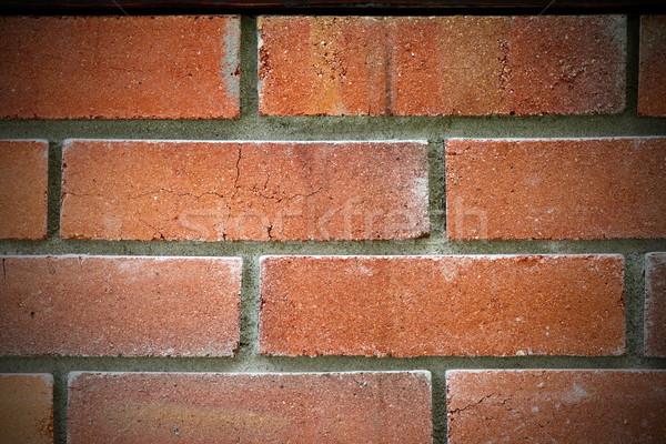 red brick wall Stock photo © taviphoto