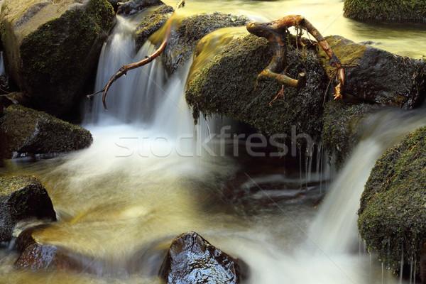 Cachoeira montanha córrego pequeno Foto stock © taviphoto