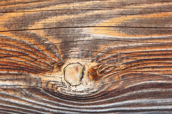 Textura de madeira pormenor naturalismo real padrão Foto stock © taviphoto