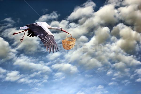 Cicogna baby basket volo nuvoloso cielo Foto d'archivio © taviphoto