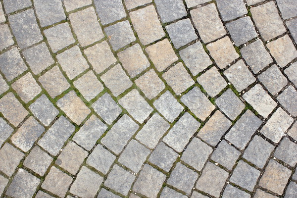 rectangular stone pavement Stock photo © taviphoto