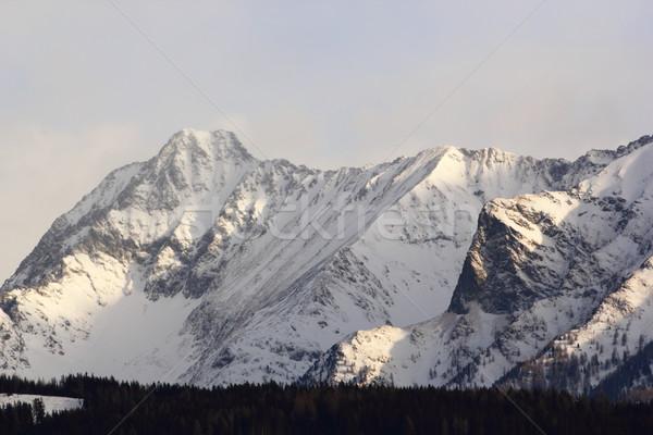 mountain peaks Stock photo © taviphoto
