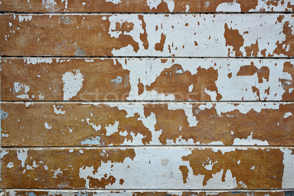 damaged plaster on old wall Stock photo © taviphoto