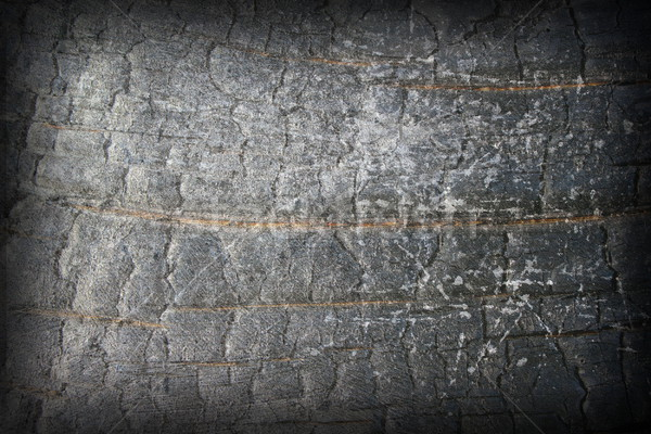 abstract distressed burned wood Stock photo © taviphoto