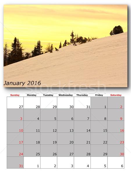 january nature calendar page layout Stock photo © taviphoto