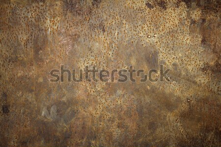 rusty metal background real texture Stock photo © taviphoto