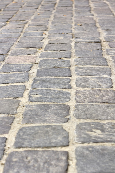 stone tiles on pedestrian pathway Stock photo © taviphoto