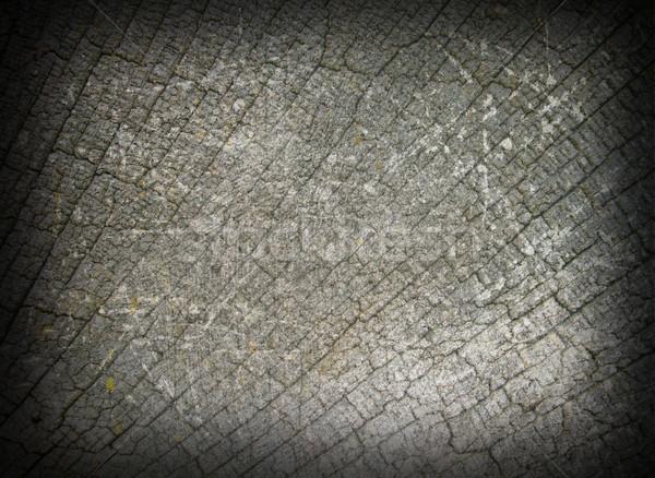 abstract view of oak wood fibers Stock photo © taviphoto