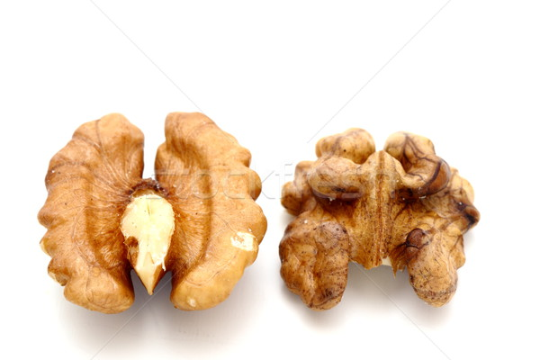walnut kernel Stock photo © taviphoto
