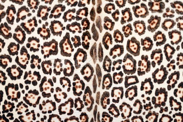 closeup of leopard fur Stock photo © taviphoto