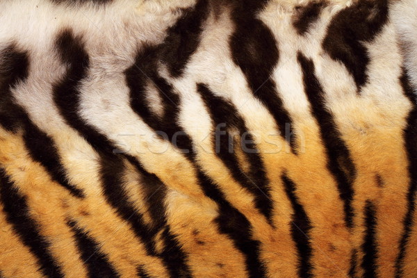 natural pattern on tiger fur Stock photo © taviphoto