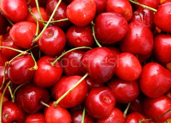 Cerise  tige attaché rouge alimentaire Photo stock © taviphoto