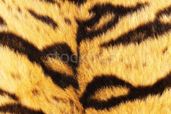 тигр черный мех животного Сток-фото © taviphoto