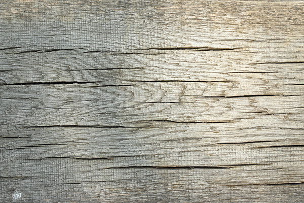 texture of cracked wood plank Stock photo © taviphoto