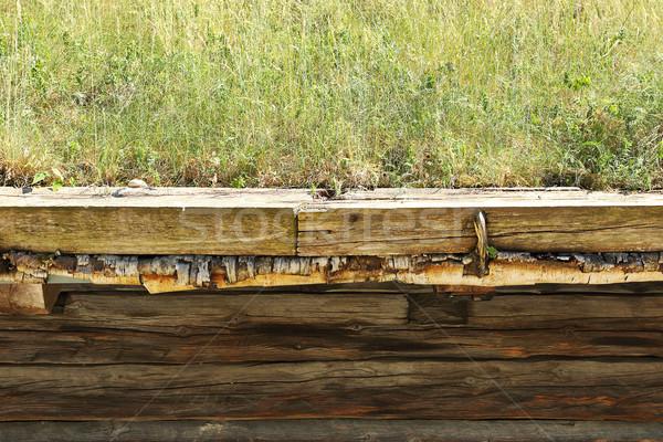 詳細 ノルウェーの 伝統的な 屋根 樺 ストックフォト © taviphoto