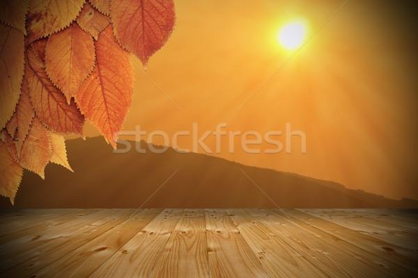 Pôr do sol varanda outono cereja árvore Foto stock © taviphoto