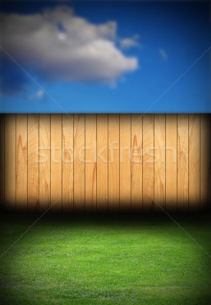 Fichte Zaun Hinterhof natürlichen Hintergrund grünen Stock foto © taviphoto