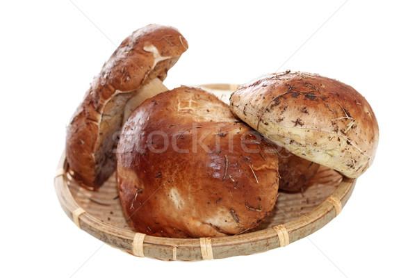 porcini mushrooms on wicker plate Stock photo © taviphoto