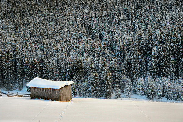 remote cottage in the mountains Stock photo © taviphoto