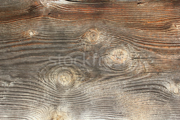 knots on spruce wooden texture Stock photo © taviphoto