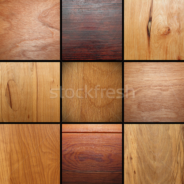 real wood veneer collage Stock photo © taviphoto