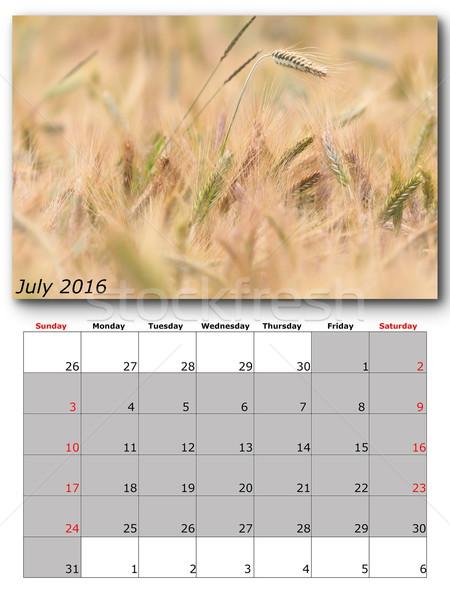 july nature calendar page layout Stock photo © taviphoto